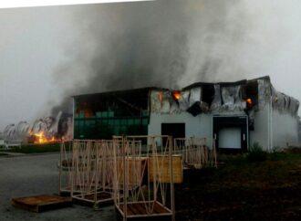 На Одещині згорів склад найбільшого виробника промислового часнику