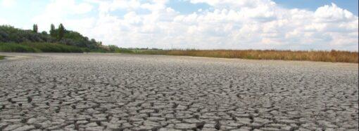 «Великая сушь» одесских степей: регион спасут бюветы и методика трех горизонтов