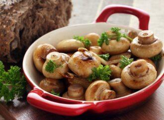 Тихая охота: секреты приготовления грибных блюд