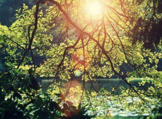 И о погоде: зимою лето, осенью – весна