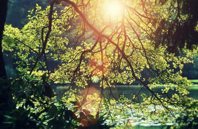 И о погоде: зимою лето, осенью — весна