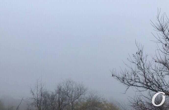 Погода на 19 листопада. Одеситам варто очікувати на густий туман