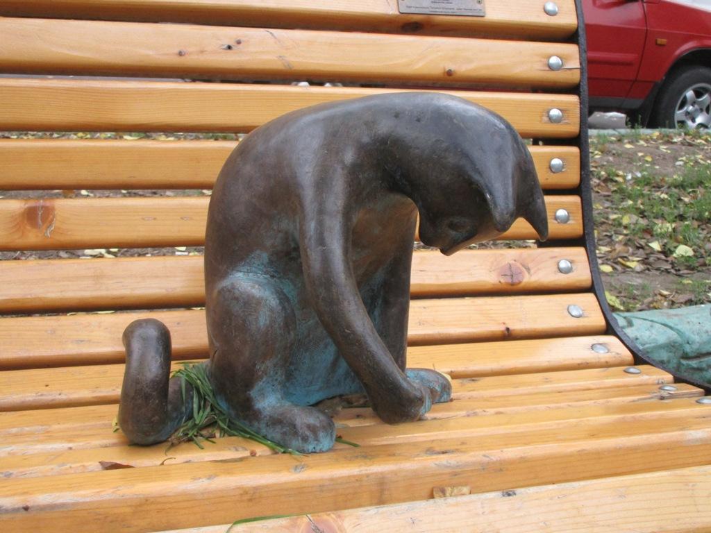 Планшет у кошки украли уже не впервые