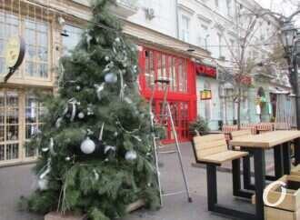 Что произошло в Одессе 21 ноября: поваленные деревья и первая новогодняя елка на Дерибасовской