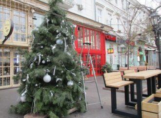 Ноябрьский ветер не помеха: на Дерибасовской установили первую новогоднюю елку