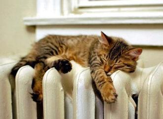 Відсьогодні в Одесі розпочався опалювальний сезон: 14 котелень почали вироблення тепла