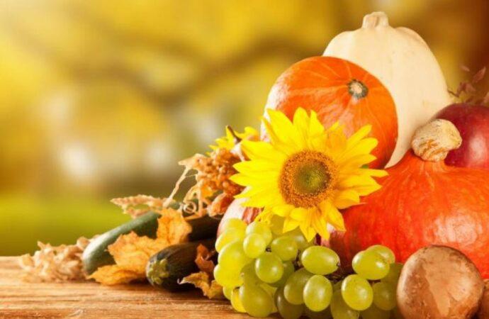 Дары осени: собираемся на семейный праздник в парк Шевченко
