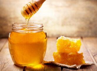 Лекарство с пасеки: от чего вылечит мед
