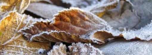 Погода в Одессе 28 ноября: ночь будет морозной, а утро – туманным