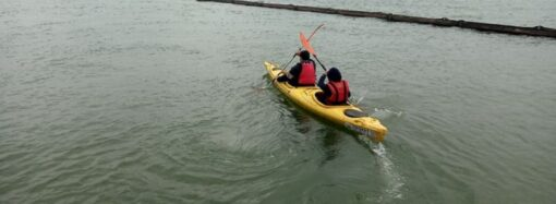 Нефтяное пятно обнаружили в реке возле Измаила: ликвидировать его помогали каякеры
