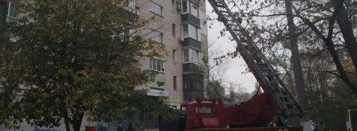 Як в Одесі рятували кошеня, яке опинилося на кондиціонері 9-поверхівки