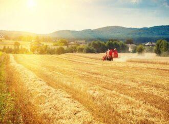 Рынок земли: как будут продавать украинскую землю
