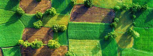 Рынок земли: как защитить свое имущество?