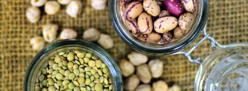Чем полезны бобовые культуры?