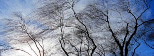 Погода в Одессе 26 января: облачно и ветрено