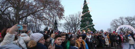 В Одесі відкрили головну новорічну ялинку міста (фото)