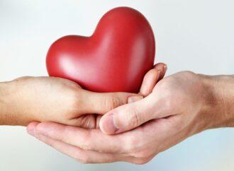 Берегите сердце: как побороть сердечные недуги с помощью народных средств
