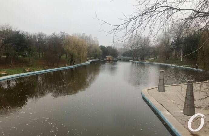 Погода в Одессе 11 марта: тепла пока что нет