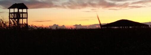 Захватывающее зрелище: одессит заметил в небе над нацпарком спутники Илона Маска