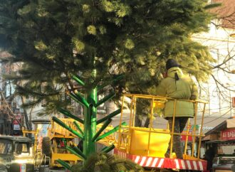 В день национального траура по жертвам пожара в Одессе устанавливают елку