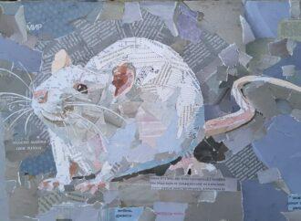 Чайки, мишки та коти: в Одесі художниця створює картини з журналів, нот і трамвайних квитків