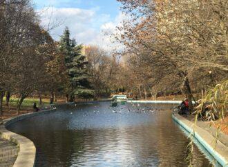 Погода на 19 грудня. У цей святковий день в Одесі буде тепло