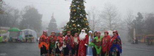 Несмотря на нелетную погоду, одесситы гуляли в парке с елкой и Дедом Морозом (фото)