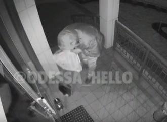 У одесского кота отобрали подаренный дом (видео)