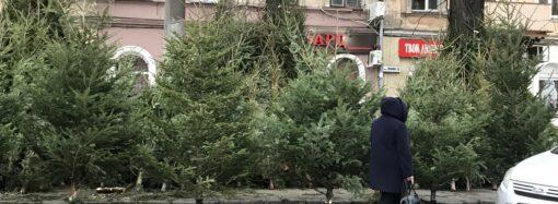 Что произошло в Одессе 13 декабря: первые елочные базары и обыски в здании ГСЧС