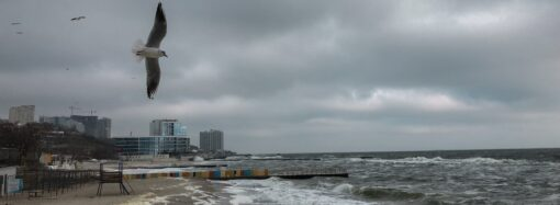 Погода на 3 грудня. Значного потепління в Одесі не очікується