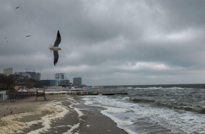 Будет ли в Одессе дождь – прогноз на воскресенье 8 августа