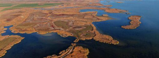 Три реки в Одесской области расчистили от старых дамб: это увеличит запасы рыбы и предотвратит затопления