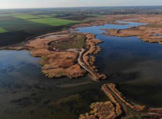 Восстановление экосистемы в дельте Дуная: The Guardian написал о заповеднике в Одесской области