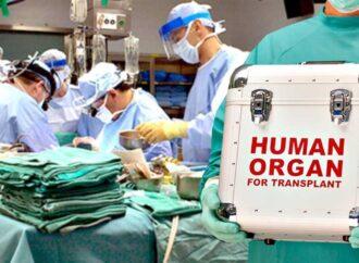В Украине заработала Единая государственная информационная система по трансплантации органов и тканей