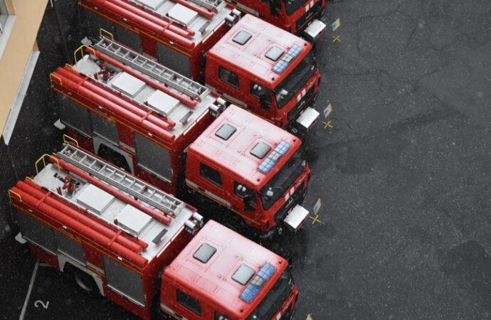 В Одесской области пожарные спасли аиста (фото)