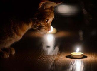 Массовое отключение света в Одессе 21 января: какие улицы останутся без электричества