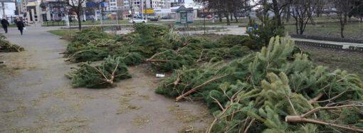 Что произошло в Одессе 2 января: закрытие городского рынка еды и акция на утилизацию елок