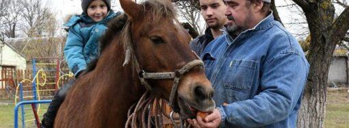 В Одесской области пони будет лечить особенных детей