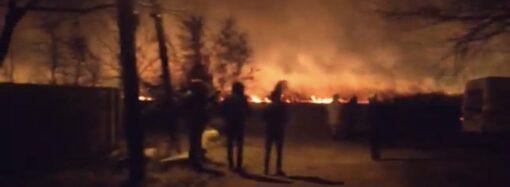 Поблизу Одеси сталася масштабна пожежа: на полях горів очерет (відео)