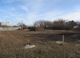 Десятки поврежденных растений: в одесском парке «Юность» уничтожают зеленые насаждения (фото)