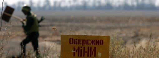В Одесской области обнаружили 5 мин времен Второй мировой войны