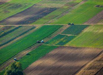 Скільки коштуватиме мінімальна вартість гектару землі після відкриття ринку землі
