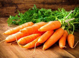 Для щитовидки, зрения и при гастрите: от чего лечит морковь
