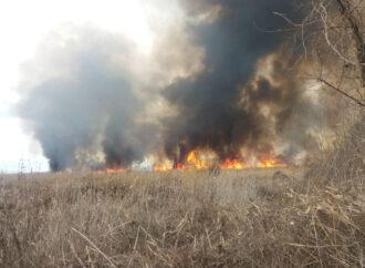 Что произошло в Одессе 23 января: пожар на Большевике и последствия сильного ветра