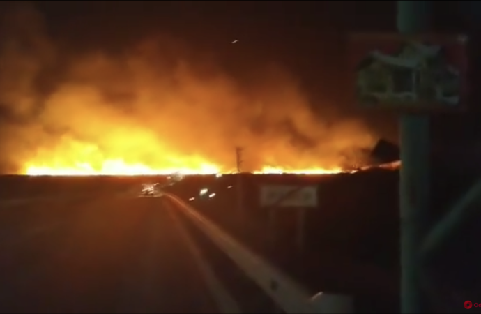 На Одещині загорілися плавні Дністра (відео)
