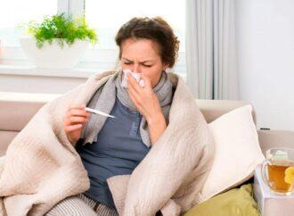 Зеленая аптека при простуде: народные методы лечения ОРВИ и гриппа