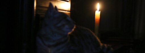 В Суворовском районе Одессы в ночь на воскресенье отключат свет