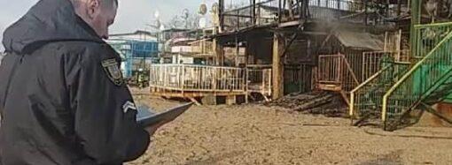 Пожежа на узбережжі Одеси пошкодила сім будиночків для відпочинку (відео)