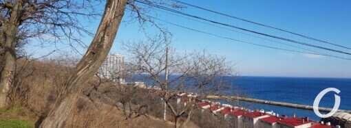 Погода на 15 лютого. В Одесі очікується незначне потепління