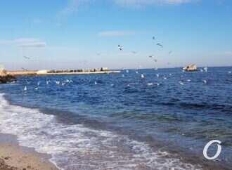 Погода на 18 лютого. В Одесу повертається тепло